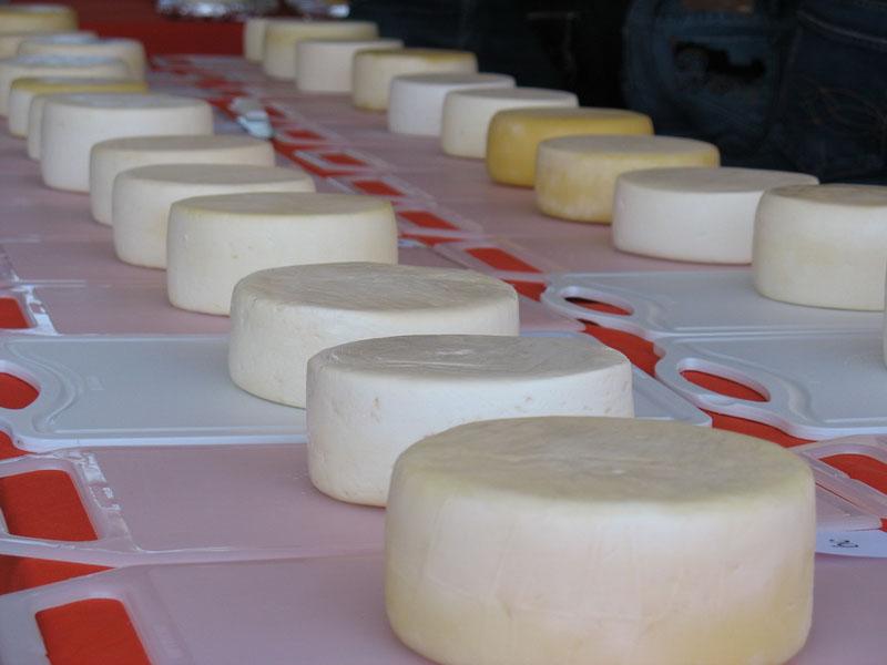 Curso online de fabricação de queijos